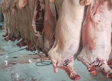 لحم سوداني وكيني