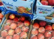 تفاح احمر و تفاح اصفر ايطالي و امريكاني و تركي