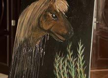 لوحة حصان البوني