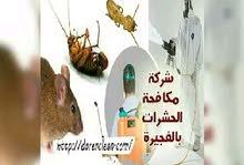 شركة مكافحة الحشرات بأفضل انواع مبيدات الصحة العامة