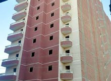 special apartment in Minya for sale