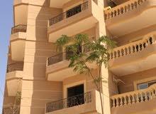 شقة لقطة بمدينة الشروق 142 متر واجهة أمامية من المالك مباشرة