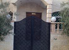 منزل مستقل للبيع في عين الباشا ( كاش فقط ) قابل للتفاوض