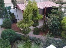 عماره 3 طوابق واجهتين حجر ، حي الشيخ سليمان جرش