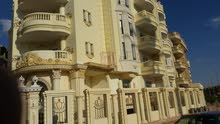 عمارة للايجار ارقى احياء مدينة الشيخ زايد