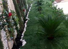 فن للحدائق المنزليه زراعة الأشجار زينه ومثمر تركيب نجيل صناعي وطبيعي عمل شلالات