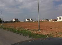 قطعة ارض للبيع في مرج الحمام حوض ام السماق