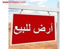 ارض مميزة لقطة اللقطة للبيع في رجم عميش