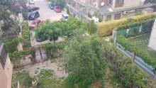 شقة راقية للايجار داخل المعمورة بشارع النصر الرئيسي بجوار عمارة عصير مكة ب 800 جنية