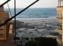 شقة تطل علي دانا بلازا مسجلة في شاطئ النخيل 110 متر