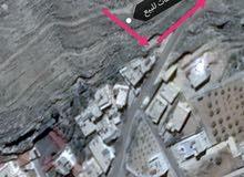 ارض للبيع الطفيلة وادي زيد حي الحسين