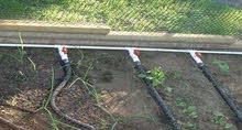 انابيب الرى تحت سطح التربه التى توفر فى الماء والكهرباء