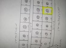 ارض 500متر في اللويفيه شارع الهجره غير الشرعيه سابقا