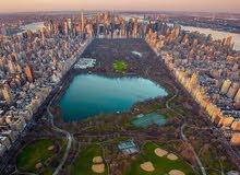 مهندس تخطيط عمراني ( Urban planning)