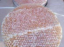 جميع أنواع العسل اليمني دوعن