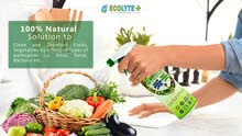 ECOLYTE FOOD DISINFECTANT SPRAY  FRUITS AND VEGETABLES DISINFECTANT 500mL