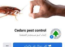 مؤسسة الارز لمكافحة الحشرات المنزلية