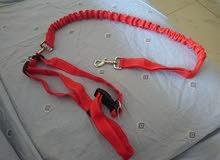 حبل كلاب من امريكا