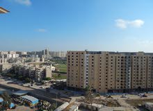 new apartment is up for sale in Alexandria Smoha