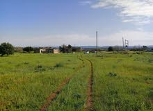 للبيع أرض عالطريق القطران اقرب نقطة لها فندق التلال الوسيطة قندفورة