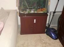 حوض سمك