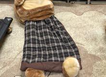 bear sleeping bags
