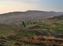 ارض مميزة للبيع بالقرب من دابوق (ام رجم) , مساحة الارض 2170م