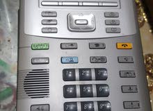 IP  AVAYA PHONE