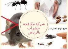 شركة رش مبيدات ومكافحة جميع الحشرات