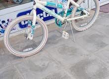 huffy bike size 20