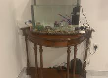 aquarium +table