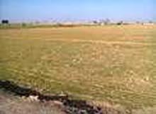 قطعة ارض بمنطقة السيدة زينب تقدر مساحتها 3300م
