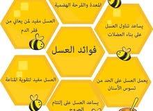 عسل طبيعي امانة الله ورسولة شرط الفحص الكيلو ب75