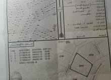 الدقم  مربع ظهر 2 للاستثمار في أراضي الدقم ارض سكنيه رقم الارض 2243