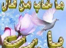 سايق رخصة عامة مصرى الجنسية