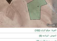 71 دنم الزبارة حوض البراذعة مع توفر شارع وكهرباء