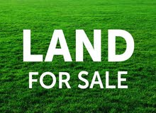 قطعة أرض 640م مميزة للبيع في اللبن