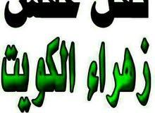 أبو أحمد نقل جميع أغراض و الأثاث نقل فك تركيب 60048061