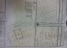 للبيع ارض سكنيه في شناص منطقه سور العبري للتواصل 96742483 المساحه600