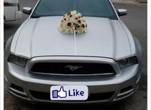 Ford Mustang 2013 For Rent