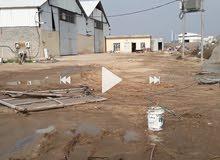 ثلاث دوانم على شارع العام من ظمن الارض جملونات عدد2 مساحة الجملون 1000 متر مربع
