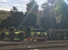 شقه  للبيع في مدينة بدر المجاورة الثالثة الحي الاول 32