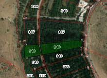 للاستثمار للبيع مزرعه 3 دنم منتجه مزروعه كامل اشجار مثمره  قرب جرش منطقة القنيه-