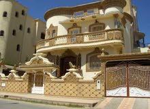 مطلوب فلل للإيجار من المالك مباشرة في حدود محافظة مسقط