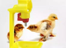 سقايات للدجاج او الطيور الاخرى