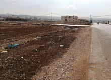 ارض على شارعين اربد بيت راس الخمس