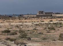 يصلح ليكون شاليه صيفي  ارض للبيع بمساحه 500 متر على شارعين قطران  في الحليس بالقرب من البحر