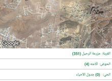 ارض للبيع  المستعجل 10 دونمات في بيرين/ شومر