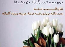 اناشاب يمني أبحث عن عمل ونقل كفاله المهنه عامل منزلي