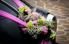 تزيين سيارات الافراح بالزينة والورود وانت في مكانك نجوك لعندك - روعة وجمال